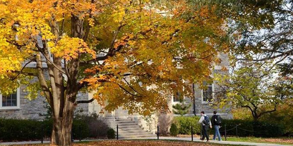 Autumn at PSU